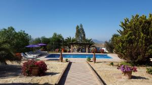 Loma Pool and garden 2